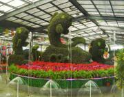 陈村花卉博览会背景音乐系统解决方案